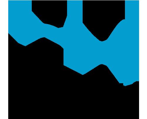 Air nolisé logo